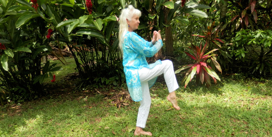 Tai Chi with Mary Mullen
